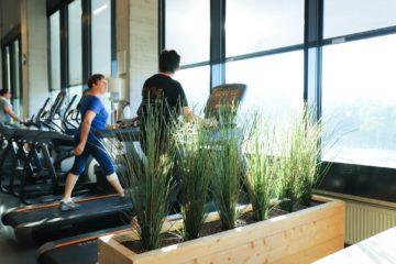 Gezond afslanken bij Gym Plus